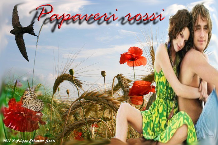 PSecard_papav